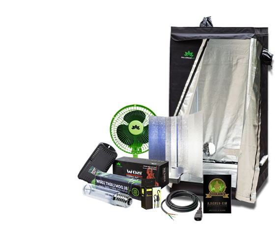 Oferta Kit Indoor